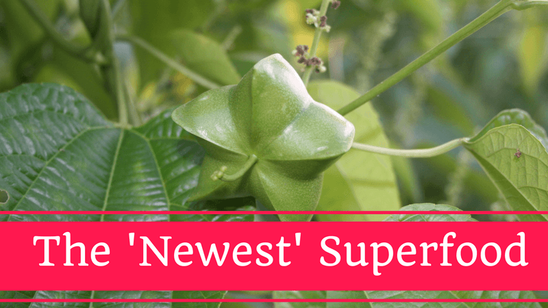 Sacha Inchi Oil Benefits - The 'Newest' Superfood Packs a Powerful Punch