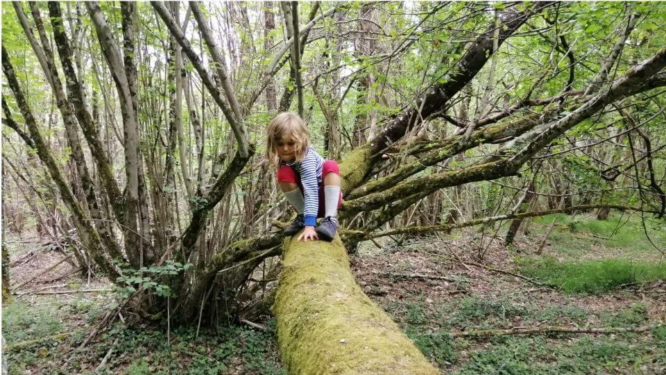 benefits of barefoot shoes for kids-prio-xero shoes-Ayla climbing tree